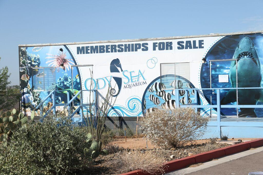The Odysea Aquarium, located at 9500 E. Via de Ventura in Scottsdale, will open its doors in July 2016. Memberships are already available through the aquarium's website.