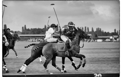 Ole Unleashed: Polo Party Preview
