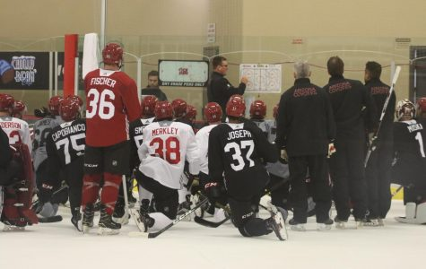 Coyotes rookies seek to showcase skills this season