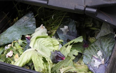 "A composting ""pick-me-up"""