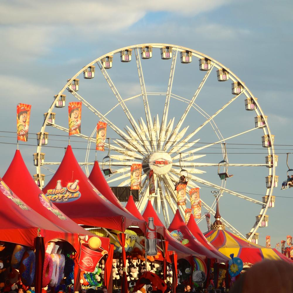 View of the ferris wheel at the Sate Fair