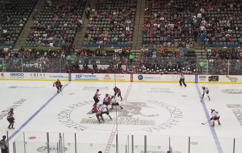 Roadrunners beat San Diego Gulls 6-3 in final game of the season.