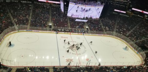 Arizona Coyotes welcome new draftees to the desert