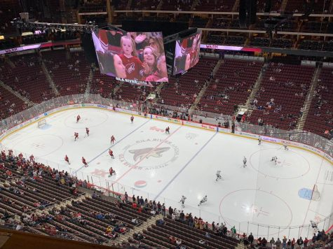 Coyotes defeat Blackhawks amidst growing playoff pressure