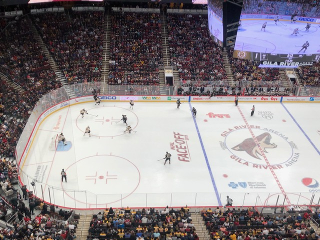 Coyotes+home+opener+vs.+the+Bruins.+
