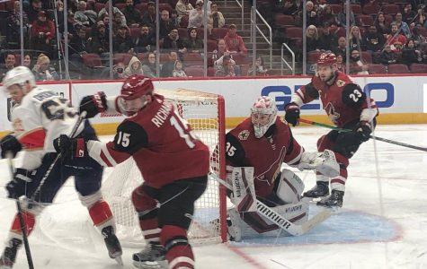 Darcy Kuemper returned to action Tuesday night.  #15 Brad Richardson (foreground) scored Arizona's only goal.