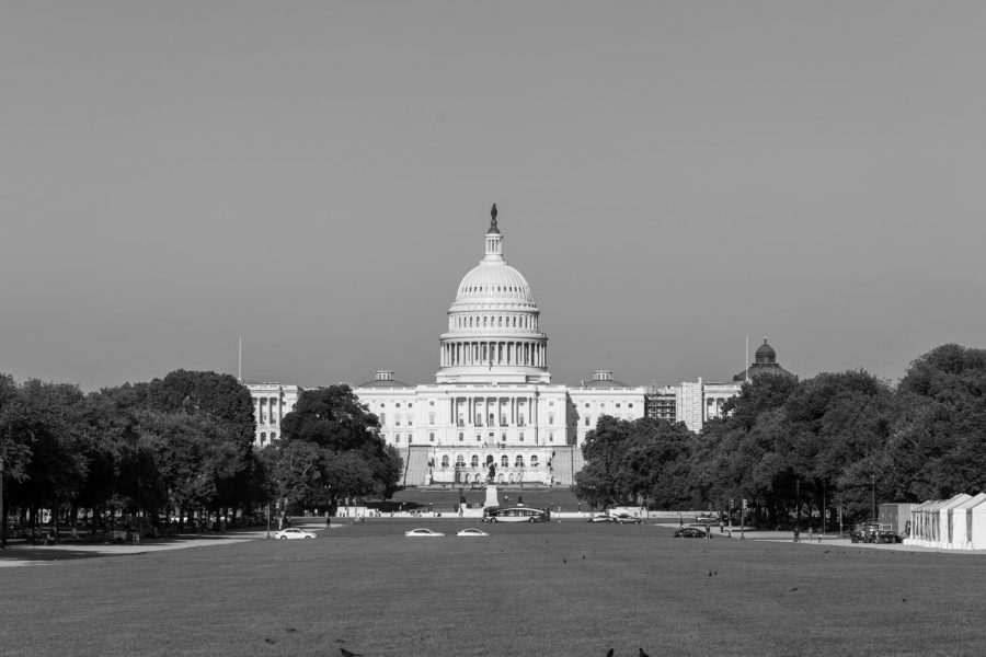 U.S.+Capitol+in+Monochrome