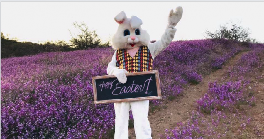Virtual Easter Parade & Picnic 2020 Globe, AZ