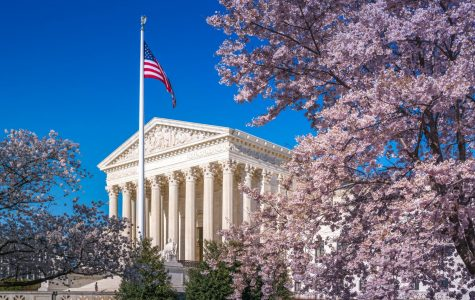 SCOTUS Surrounded by Blossoms