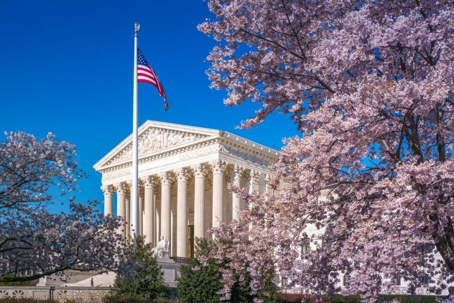 SCOTUS+Surrounded+by+Blossoms