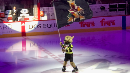 Coyotes mascot Howler isn't the only one celebrating Arizona's first playoff appearance since 2012