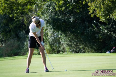 The womens NCAA Golf Championship is going on now at Grayhawk Golf Course