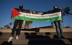 Pro-Palestinian holding a sign Students for Justice in Palestine