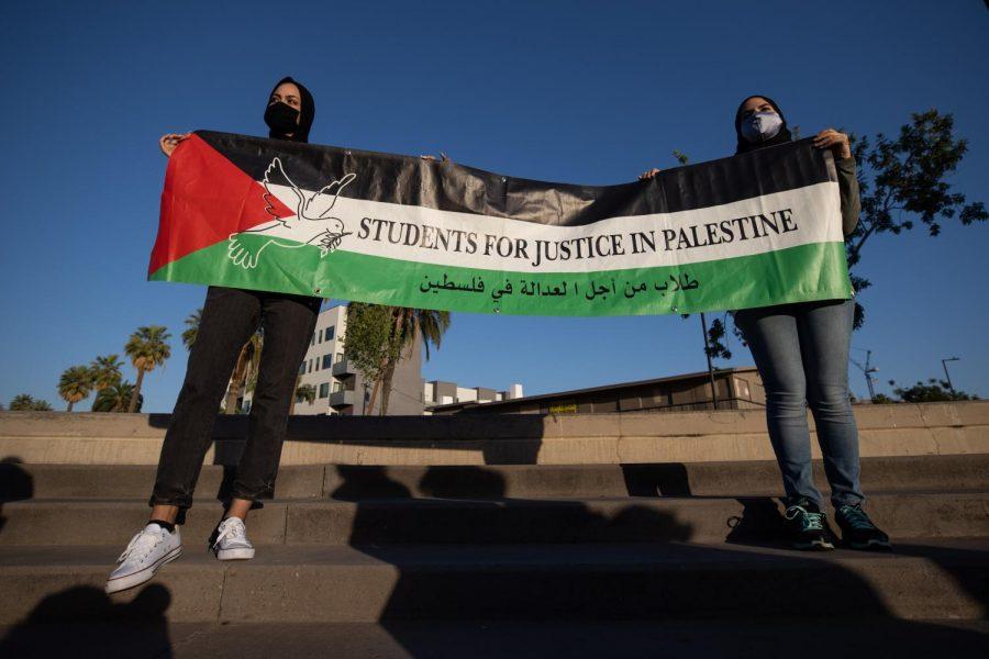 Pro-Palestinian holding a sign