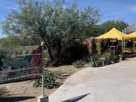 The Center for Native and Urban wildlife plant sale continues through Friday.